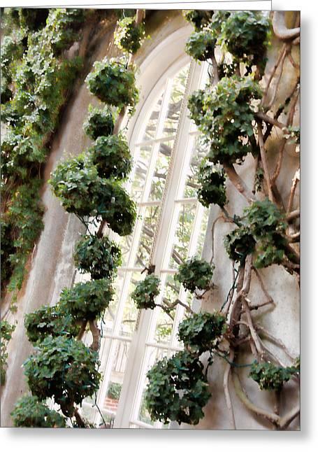 Garden Window Greeting Card by Elin Mastrangelo