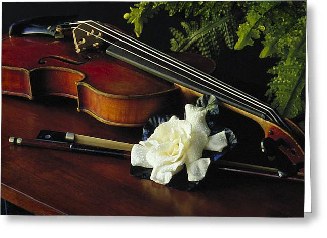 Gardenia IIi Greeting Card
