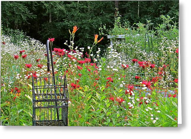 Gardens 107 Greeting Card by Patsy Pratt