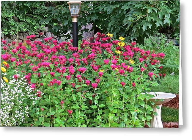 Gardens 112 Greeting Card by Patsy Pratt