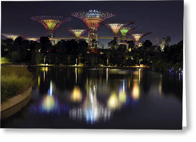 Gardens By The Bay Supertree Grove Greeting Card by David Gn
