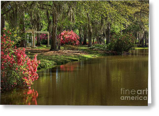 Gardens Of The South Greeting Card by Leslie Kirk