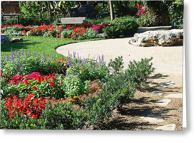 Gardenscape Greeting Card by Aimee L Maher Photography and Art Visit ALMGallerydotcom
