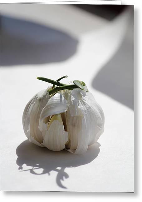 Garlic Clove Greeting Card