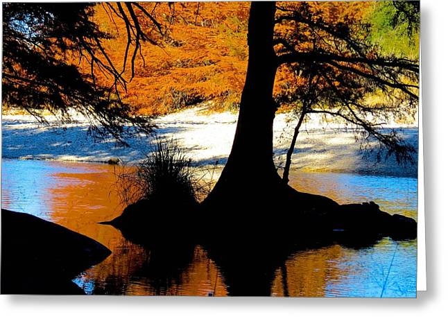 Garner State Park Greeting Card