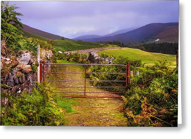 Gates On The Road. Wicklow Hills. Ireland Greeting Card