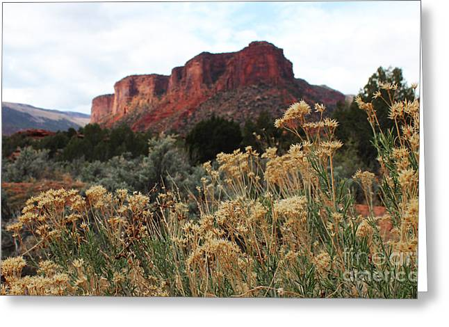 Gateway Colorado Greeting Card