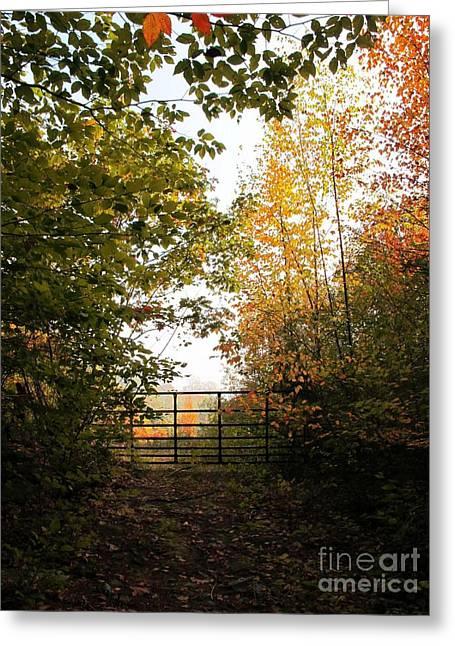 Gateway Greeting Card by Linda Marcille