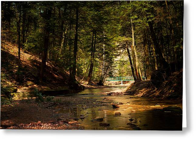 Greeting Card featuring the photograph Gathering At The Stream by Haren Images- Kriss Haren