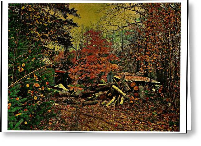 Gathering Wood For Winter  Greeting Card by Dianne  Lacourciere