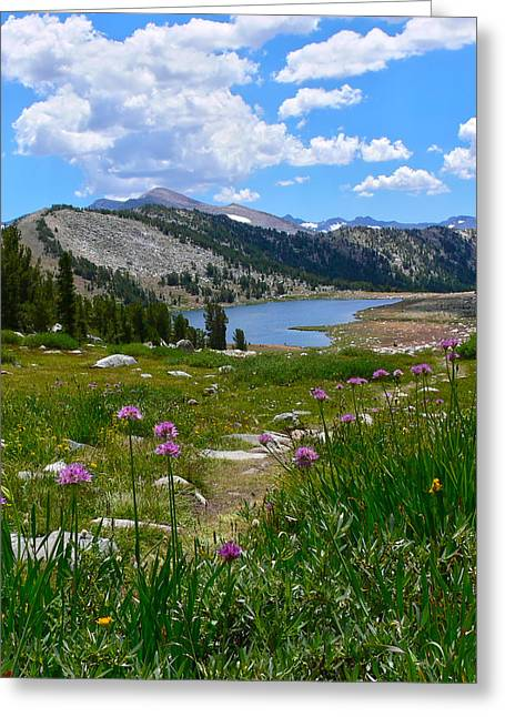 Gaylor Lakes And Wild Onions By Frank Lee Hawkins Greeting Card