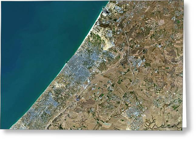 Gaza City Greeting Card by Planetobserver