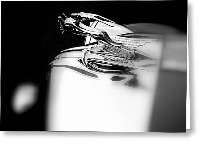 Gazelle Hood Ornament Greeting Card by Nick Kloepping
