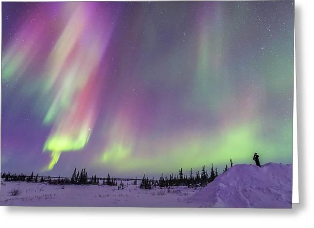 Gazing At A Colourful Twilight Aurora Greeting Card