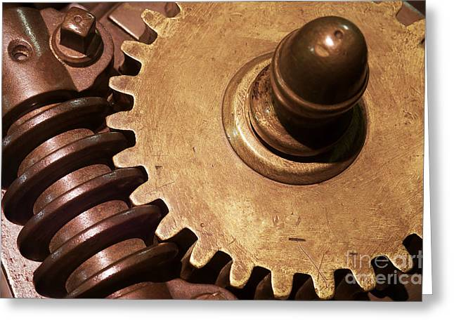 Gear Wheels Greeting Card by Carlos Caetano