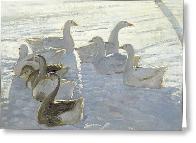 Geese Against The Light  Greeting Card by Timothy Easton