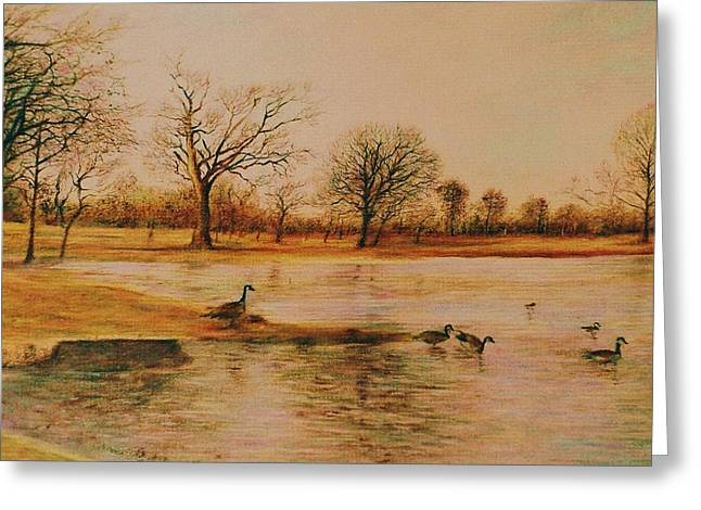 Geese Crossing Greeting Card by Terry Jackson