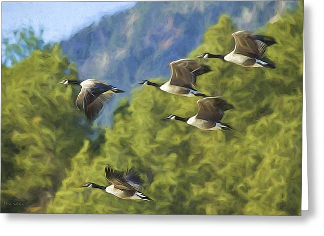 Geese On A Mission Greeting Card
