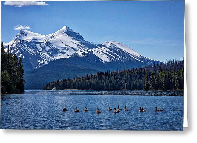 Geese On Maligne Lake - Jasper Greeting Card