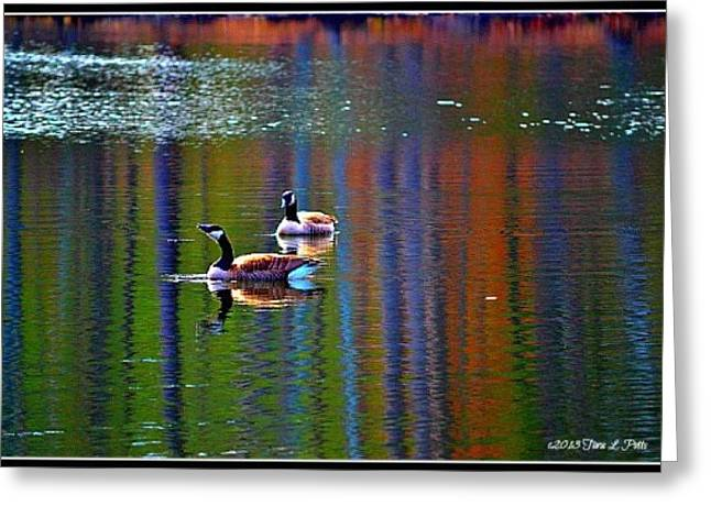 Greeting Card featuring the photograph Geese On The Lake by Tara Potts