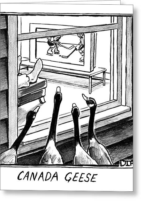 Geese Watching Hockey From A Window Greeting Card