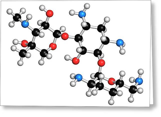 Gentamicin Antibiotic Molecule Greeting Card