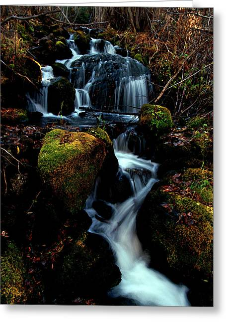 Greeting Card featuring the photograph Gentle Descent by Jeremy Rhoades
