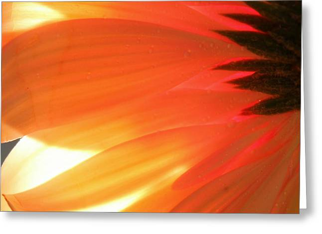 Gentle Flame Greeting Card