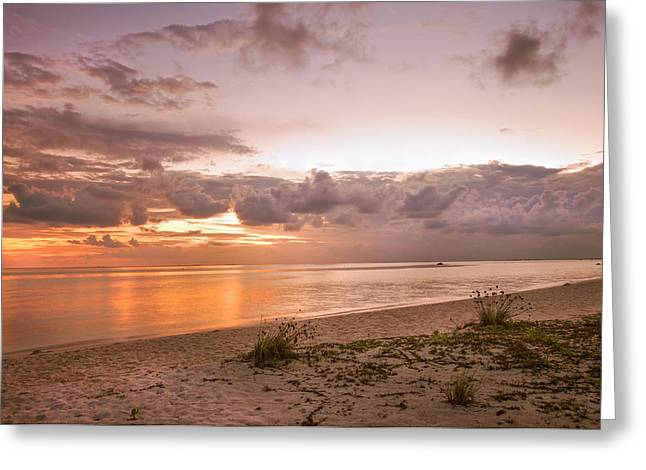 Gentle Time Of Sunrise In Tropical Island Greeting Card by Jenny Rainbow