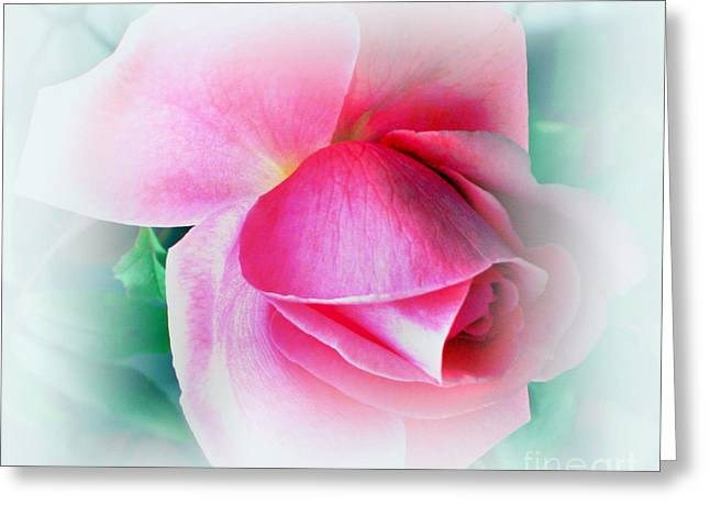 Gentleness And Grace Greeting Card by Judy Palkimas