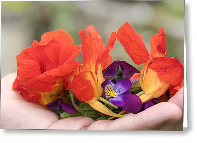Gently Held Flowers Greeting Card by Carolyn Reinhart