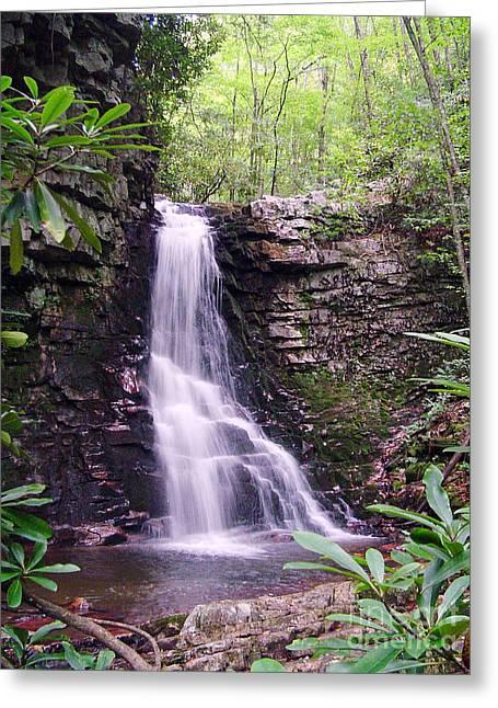 Gentry Creek- Upper Falls Greeting Card