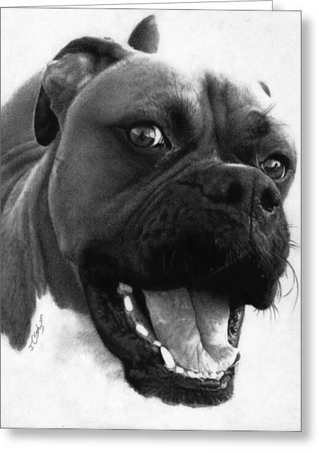 George - Boxer Dog Greeting Card