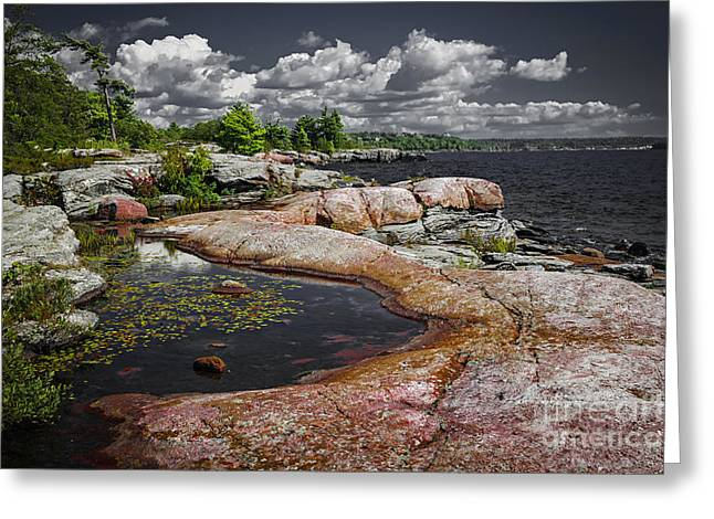 Georgian Bay Vii Greeting Card by Elena Elisseeva