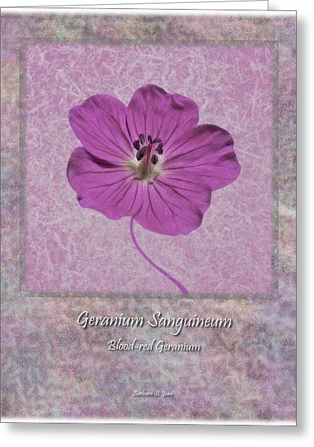 Geranium Purple Poster 4 Greeting Card by Barbara St Jean