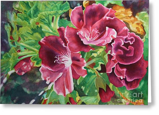 Geranium Riot  Greeting Card by Amanda Schuster
