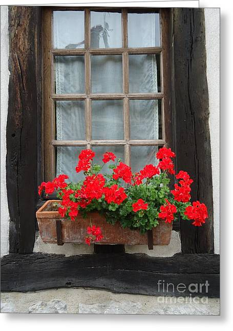 Geraniums In Timber Window Greeting Card