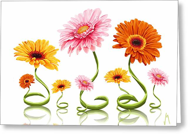 Gerbera Daisy Greeting Card by Veronica Minozzi