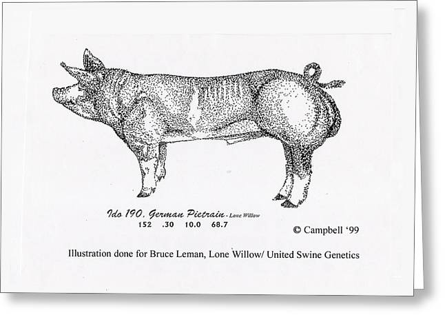 Greeting Card featuring the pyrography German Pietrain Boar by Larry Campbell