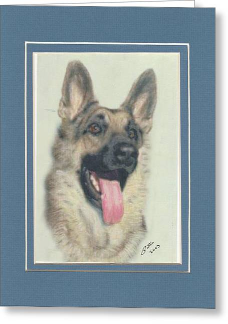 German Shepherd Greeting Card by Pat Mchale