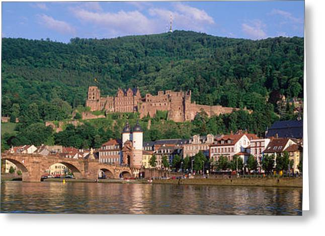 Germany, Heidelberg, Neckar River Greeting Card by Panoramic Images