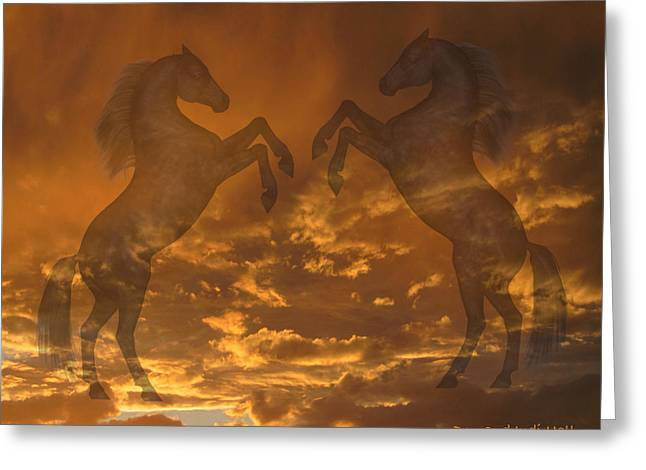Ghost Horses At Sunset Greeting Card by Donald and Judi Hall