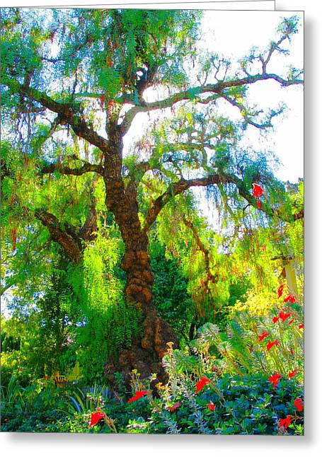 Ghost Tree Greeting Card