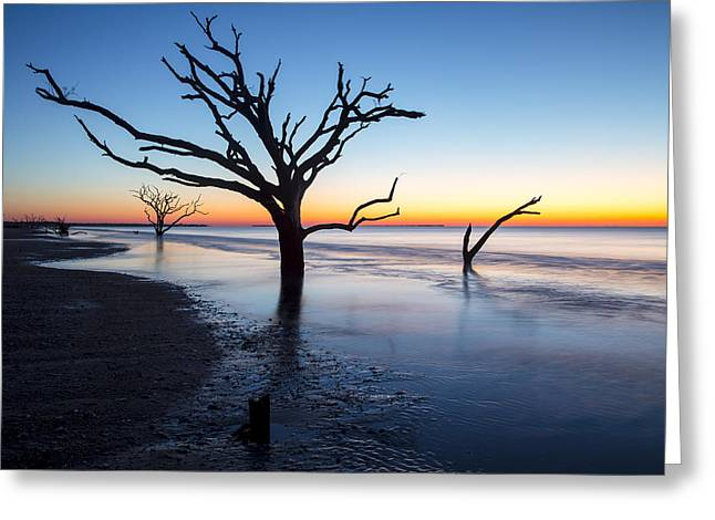 Ghost Trees Of Boneyard Beach 10 Greeting Card