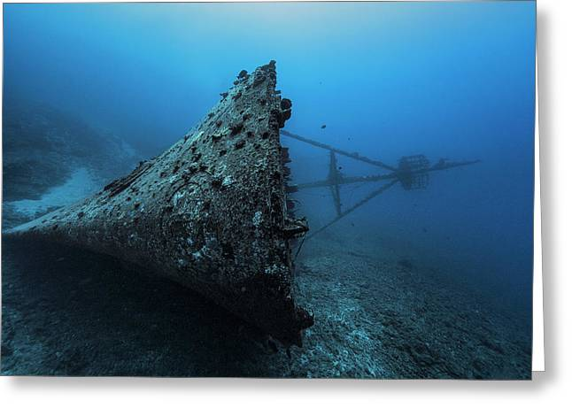 Ghost Wreck Greeting Card by Barathieu Gabriel