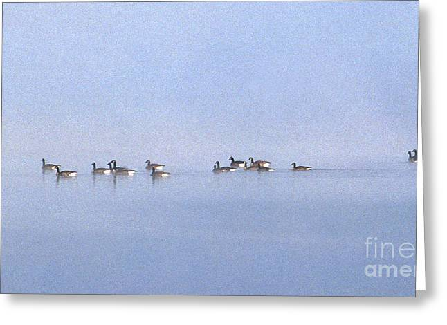 Ghosts In The Mist Greeting Card by Skip Willits