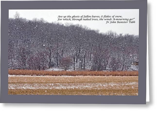 Ghosts Of Fallen Leaves Greeting Card by Nikolyn McDonald