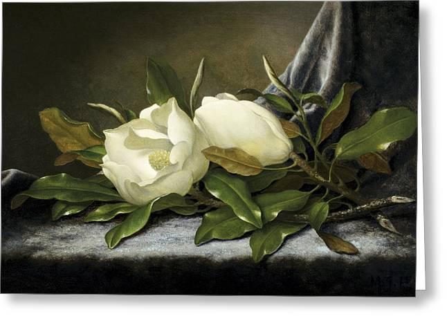 Giant Magnolias Greeting Card