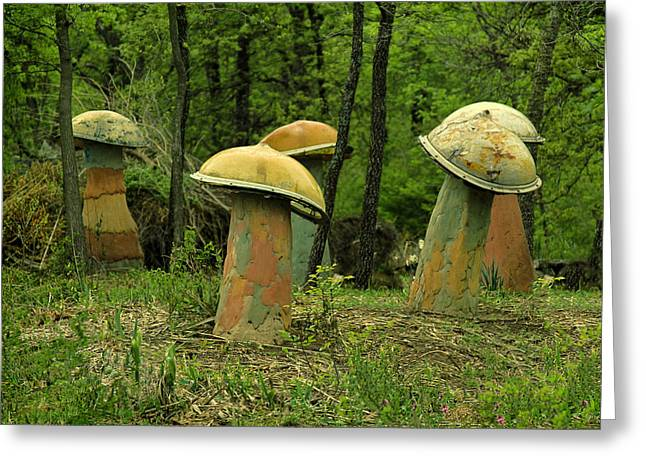 Giant Mushroom Forest Greeting Card