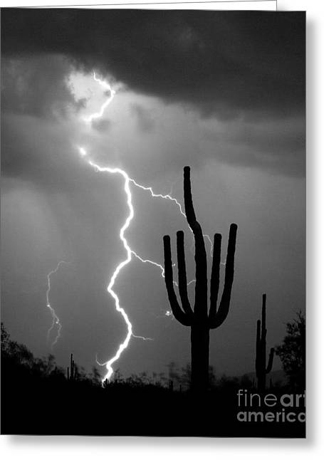 Giant Saguaro Cactus Lightning Strike Bw Greeting Card